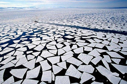 Ice Pieces in the Ocean near Antarctica