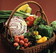 Body and Skin Rejuvenation Foods