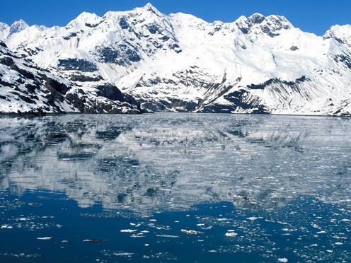 Icebergs Glacier bay Natio