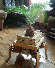 Sun Seeking Flowerpot Plantbot