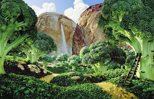 Broccoli Land