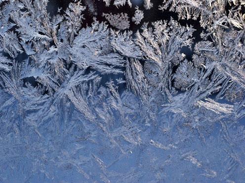 Wondow Frost