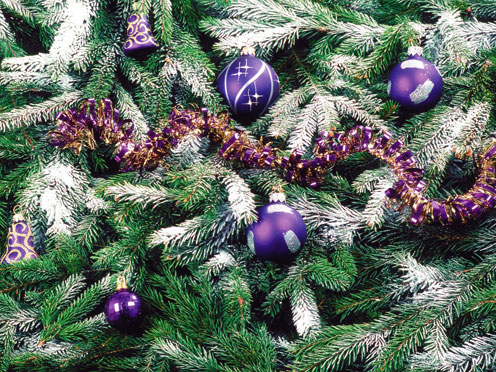 Blue-Violet Decorations on a Christmas Tree