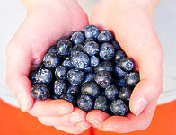Blueberries for Your Heart Health