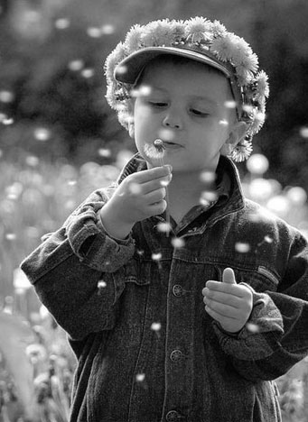 Child with Dandelions