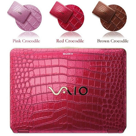 Sony VAIO Fashionable Laptop