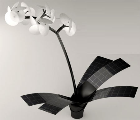 Orchid Lamp Orkys