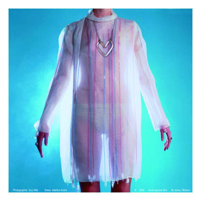 Smart Second Skin Transparent Dress