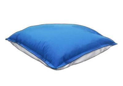 Cool Polar Pillow