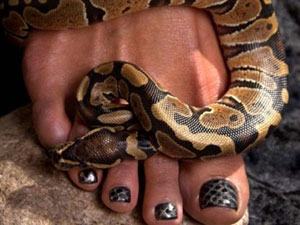 Expensive Beauty Procedures: Snakeskin Pedicure