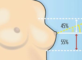 Breast Study by Patrick Mallucci