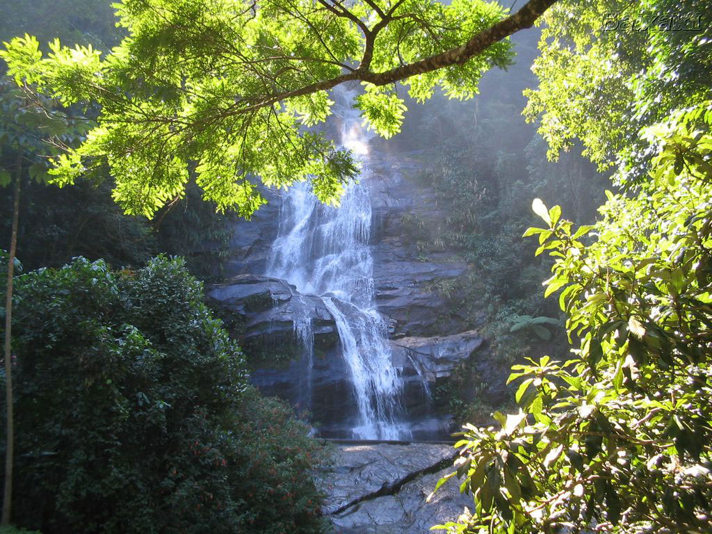 Rio-Rock-Climbing-and-Tijuca-Forest-Waterfalls