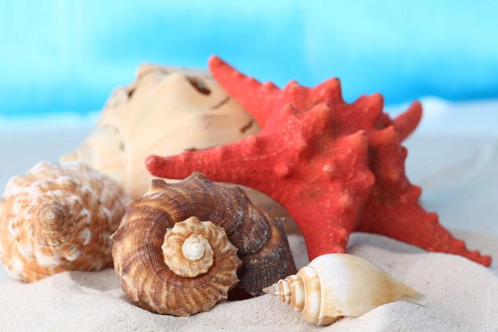 700-summer-beach-sand-sea-ocean-vacation-holiday