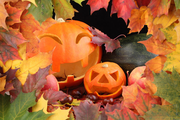 700-halloween-pumpkin--