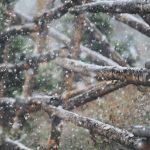 winter45324